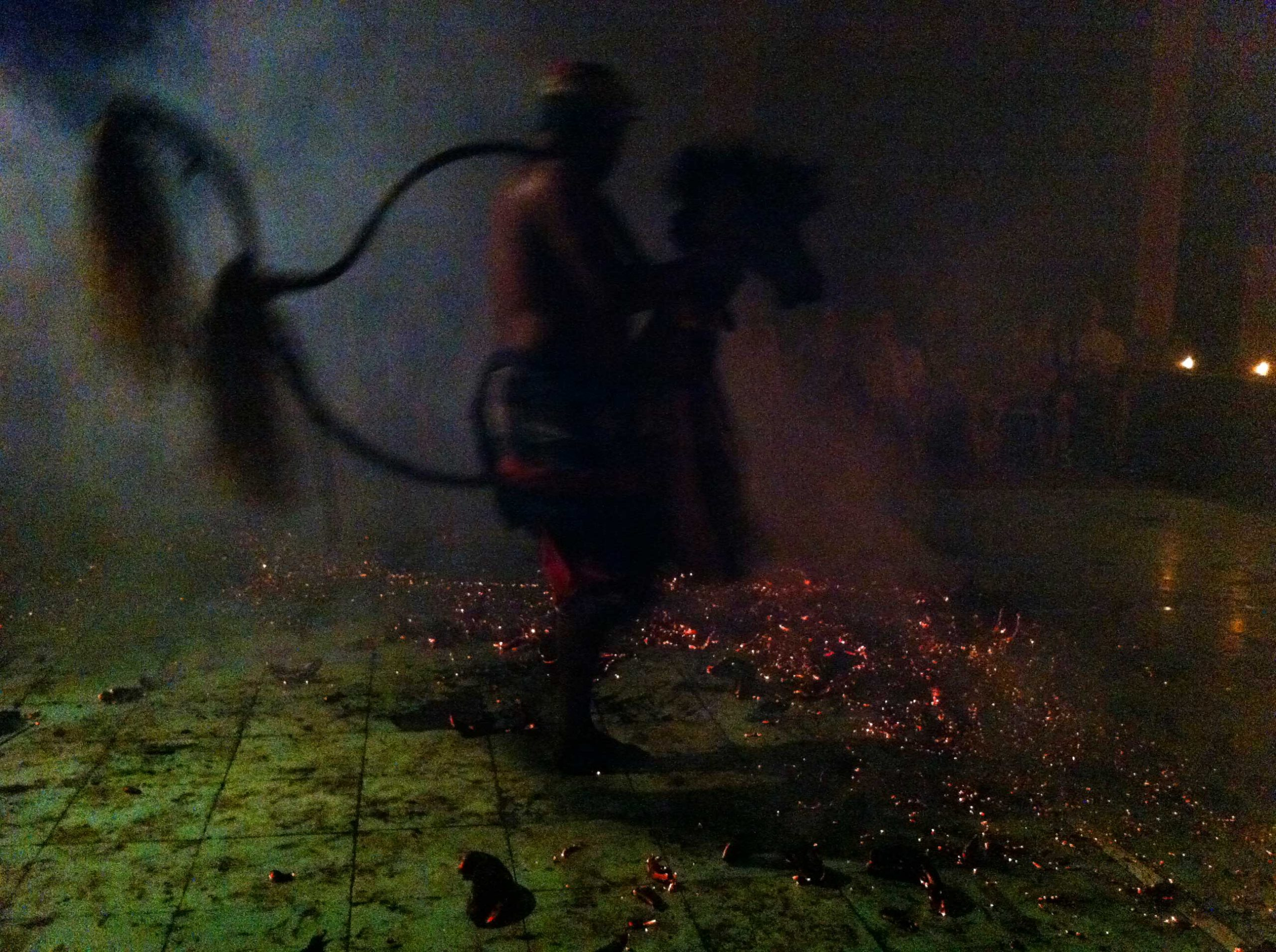 marianne venderbosch firehorse